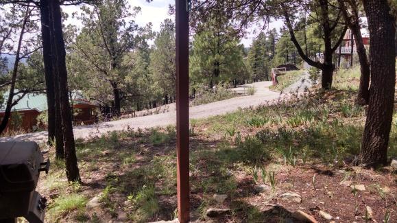 Cabin - front yard 072914