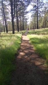 Hiking trail NM 073014