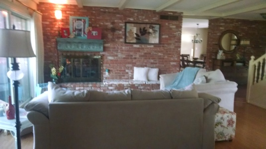 Tanya's living room 073114